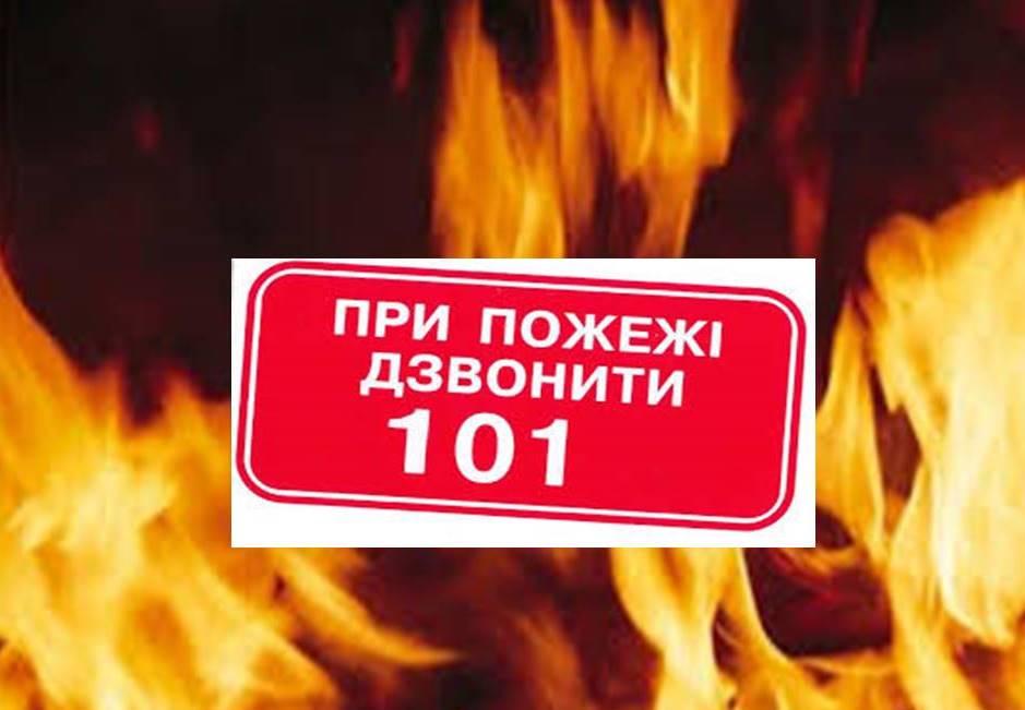 Особливості поведінки людей при виникненні лісових пожеж та пожеж в природних екосистемах