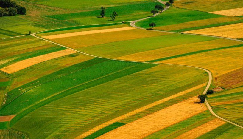 До відому орендарів земельних ділянок сільськогосподарського призначення приватної власності, які розташовано на території Шполянської об'єднаної територіальної громади